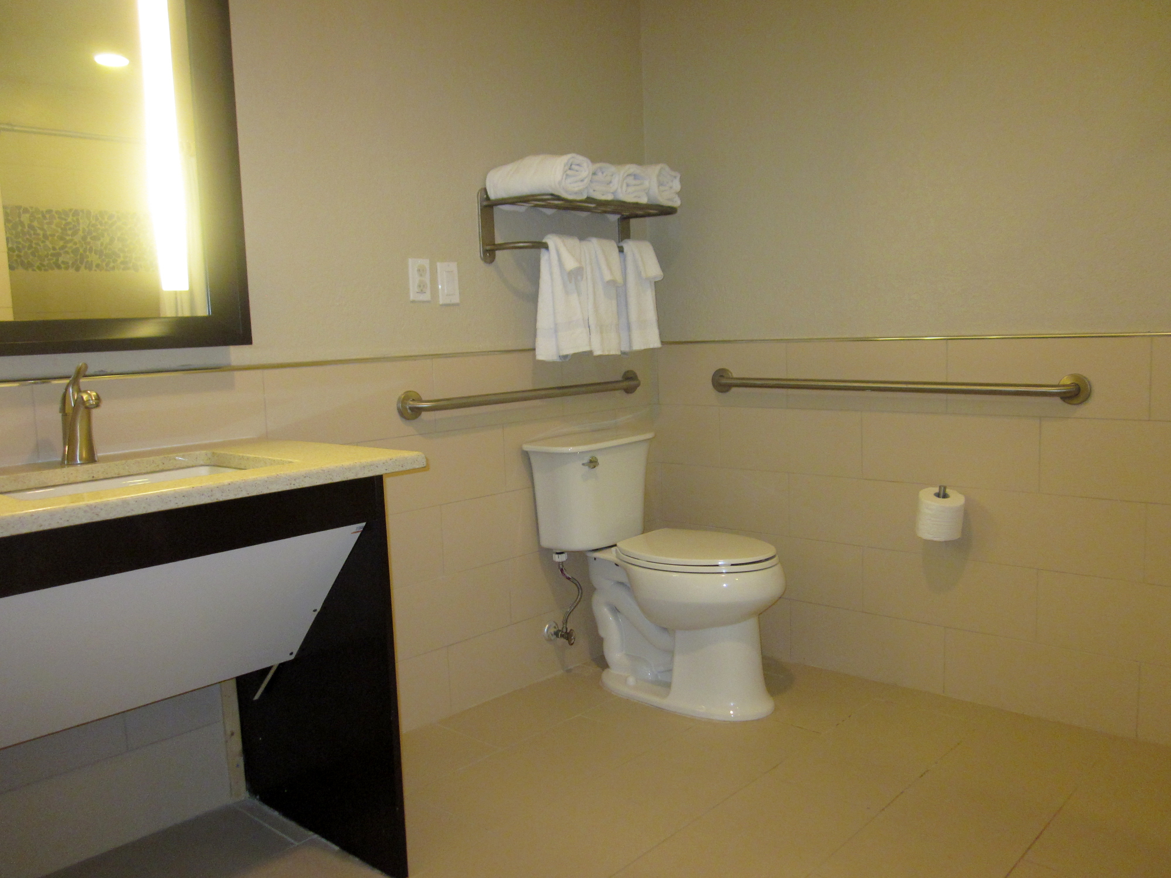 Accessible Bathroom Disability Smart Solutions Ada